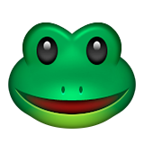 Green frog with smile