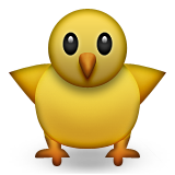 Baby chick with body
